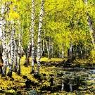禾木旅游攻略图片