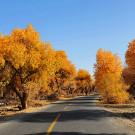 塔克拉玛干沙漠攻略图片