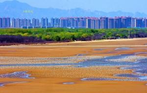 【北戴河图片】北戴河:鸟天堂  梦海湾   沙世界