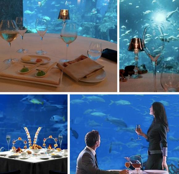 海底世界的约会 亚特兰蒂斯ossiano海底餐厅晚餐 4道式
