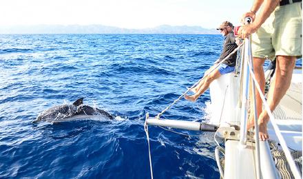 泰国普吉皇帝岛 珊瑚岛豪华双体帆船浮潜海钓一日游(酒店免费接送