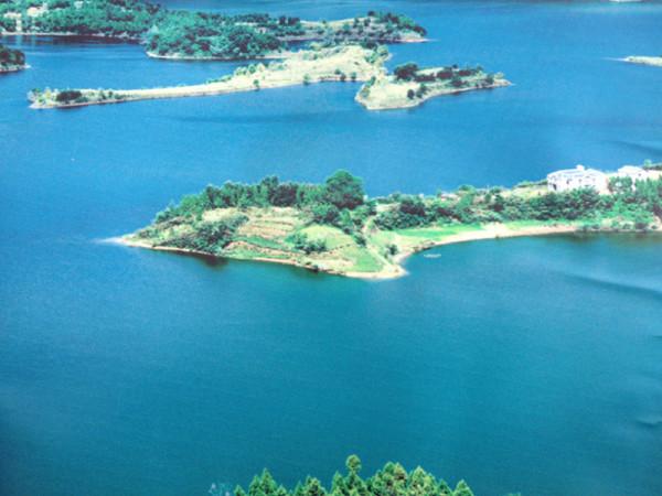 自然原始的岛屿画