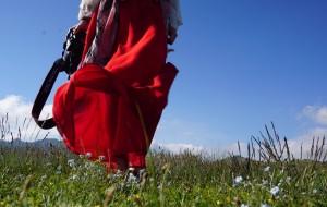【伊宁图片】西风脚步的尽头,春风不度的苍茫                --2017年6月12天北疆