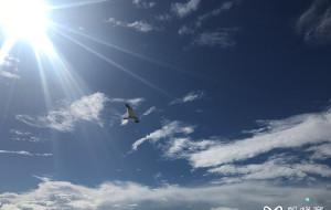 【基韦斯特图片】美国佛州自驾游(上篇)---杰克逊维尔、奥兰多、迈阿密、基韦斯特、西棕榈滩