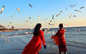 【秦皇岛图片】想起你来  看看大海