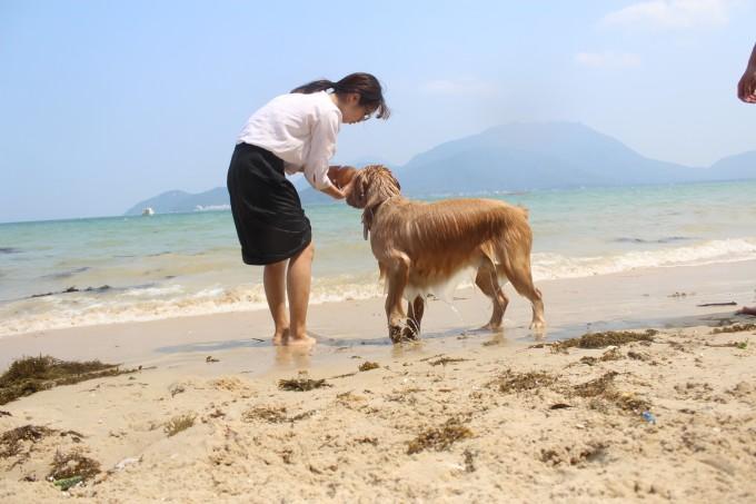 带上狗狗们一起去海边(官湖角,较尾场2日一夜),深圳