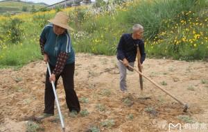 【孝感图片】2012年5月份湖北孝感大悟自然风光的回忆