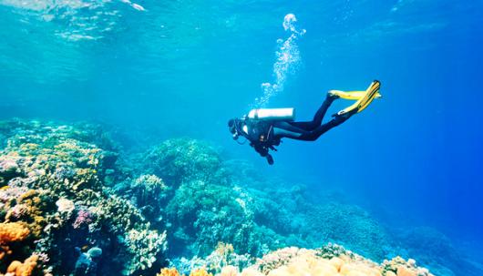苏梅岛一日游涛岛深潜南园岛浮潜 泰国旅游涛岛潜水