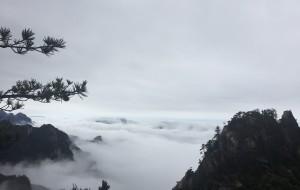 【西峡图片】西峡 老界岭