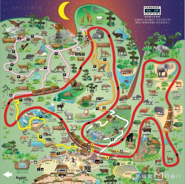 从克拉码头到新加坡动物园大概19新币  入园后抓紧时间拿景区地图