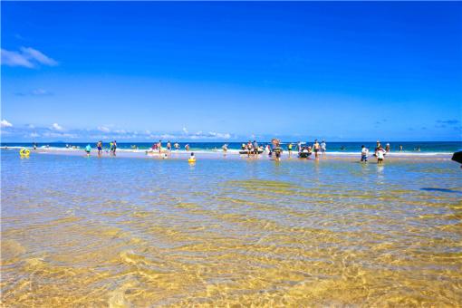 阳江海陵岛2日游(东方夏威夷 欢乐黄金海岸冲浪 大角湾海滨浴场 十里