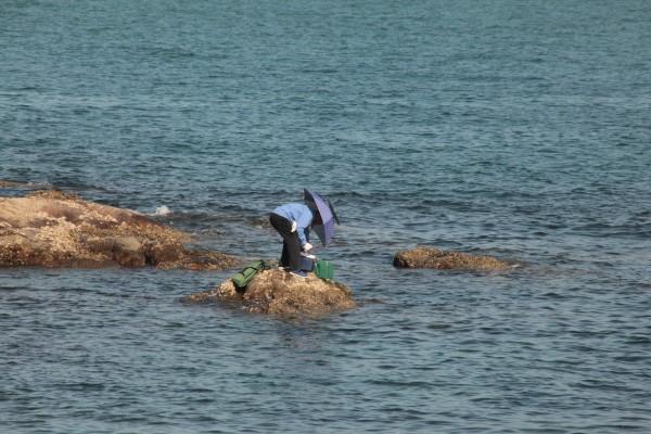 海南岛自驾旅行——棋子湾(140)图片