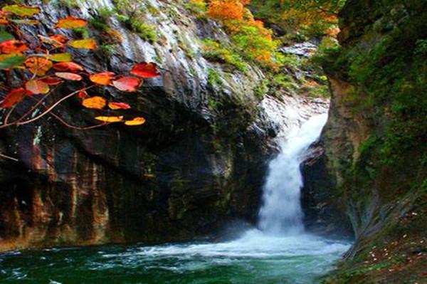 养子沟风景区位于河南省栾川县城东5公里处,景区可游览面积18.