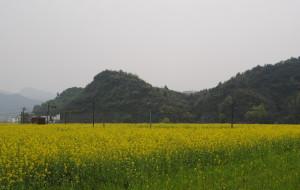 【萍乡图片】春天里的萍乡东桥