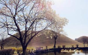 【庆州图片】玩转韩国系列—庆州(天马冢,佛国寺,瞻星台等)游记攻略