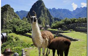 【马丘比丘图片】古老山巅上的迷城---马丘比丘 【寻古访今秘鲁行(12)】