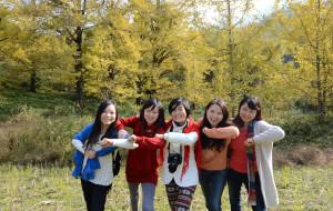 【永州图片】湖南永州银杏古树千年的修行