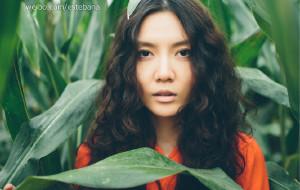 【河北图片】暮云无声 明月未出 - 中秋节的晚玉米 [2013.9.20]