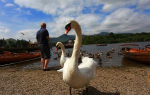 【英国湖区图片】第四篇 温德米尔湖区  2013年7月英国自驾之旅