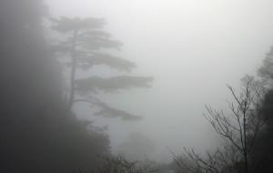 【乳源图片】南岭国家森林公园~~~小黄山