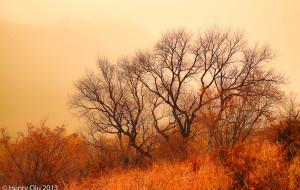 【赤城图片】美丽的海陀山:单人两天行摄穿越