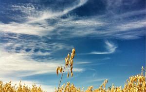 【沽源图片】草原天路-百里坝头-沽源崇礼三日游
