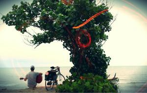 【顺化图片】1人1车1琴70天骑行东南亚,遇见我的友情和爱情(越南柬埔寨泰国)