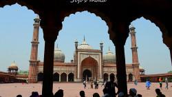 新德里景点-新德里贾玛清真寺(Jama Masjid)
