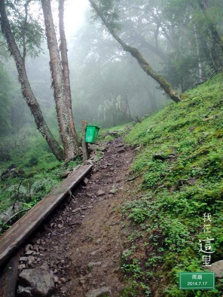 """始森林纯天然的全景""""厕"""
