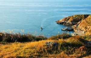 【渔山岛图片】我的耳朵宛如贝壳,思念大海的涛声----渔山秋恋