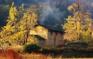 【南雄图片】我的家南雄坪田-银杏之乡