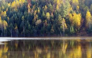 【松原图片】伊春行摄之旅(一)——兴安公园、五营森林公园、新青湿地