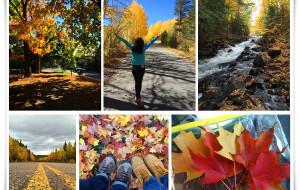 【渥太华图片】2014寻找北美的秋天(32日,加拿大+美国多图,一家7口超详细攻略)