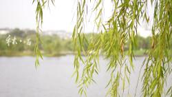 常州景点-天目湖