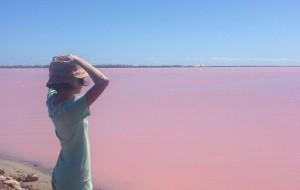 【珀斯图片】西澳大利亚 粉红湖Pink Lake 我的爱人