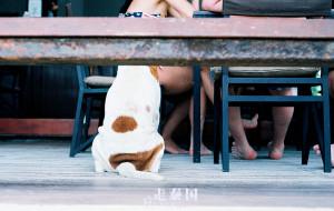 【芭提雅图片】晃晃悠悠走泰国(曼谷芭提雅格兰岛五天五夜,接着多图杀猫)