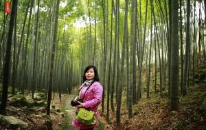 【达州图片】大竹竹海