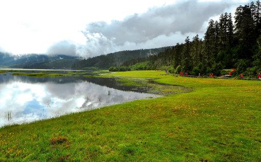 之后乘车前往【普达措国家森林公园】(温馨提示:游览时间约180分钟,普