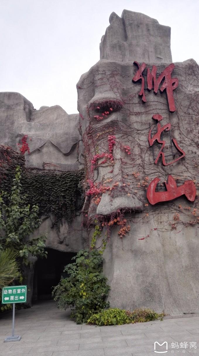 童年记忆 北京动物园