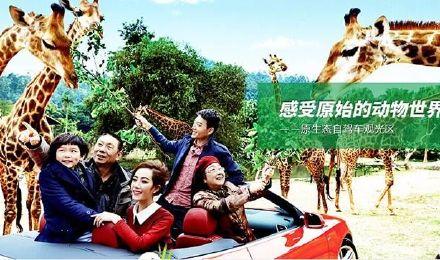 【深圳出发】广州长隆野生动物园