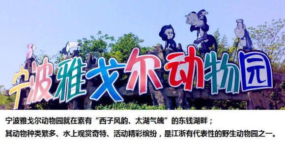 """01 / 卧龙洞内声光电演绎恐龙时代的""""史前蟒林""""。 02 / 犀牛、袋鼠、火烈鸟、白象等200多种动物。 03 / 中国水域面积较大的野生动物园。 04 / 体验划橹船上观赏动物的乐趣。 宁波雅戈尔动物园座落在具有""""西子风韵、太湖气魄""""的东钱湖旅游度假区内,占地1900亩。汇集动物200余种,上万余只(头)。  宁波雅戈尔动物园(中华名鸽苑)位于宁波市东钱湖风景区的雅戈尔动物园内,占地面积270亩,山脉连绵、水系纵横、景色绮丽,是一片生机盎然的绿洲。  观"""