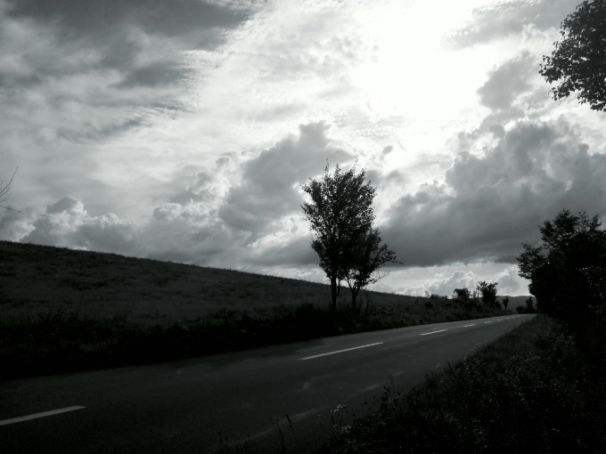 农村马路风景图