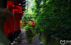【白滨町图片】带着娘亲游关西【8天7晚:京都,白滨,大阪】
