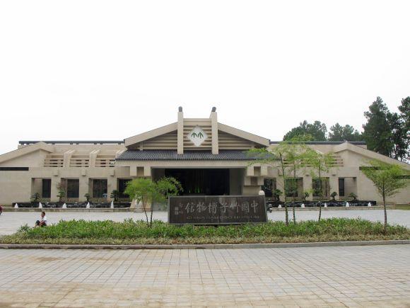 浙江湖州安吉竹博园/竹子博览园 含熊猫馆 提前一天以上订购