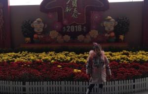 【广州长隆旅游度假区图片】2016.02月广州亲子游,最新最全的长隆野生动物园旅游攻略!绝对原创!