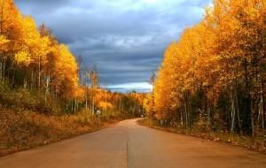 【海拉尔图片】在秋日的童话里激情穿越------大兴安岭