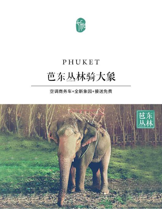 【空调车接送】泰国普吉岛芭东丛林骑大象atv包接送 普吉岛半日游一