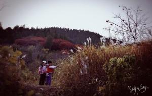 【临朐图片】秋游临朐官护山