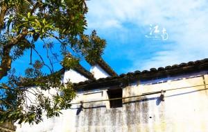 【周庄图片】【宝藏纪念】无关岁月,无关烟雨——属于我们的江南小调