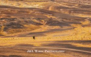 【摩洛哥图片】【蜂首纪念】J&L摩行纪——再见,榴莲(Morocco)